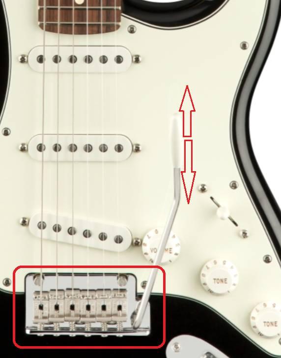 ngua dan guitar dien fender player stratocaster pf black