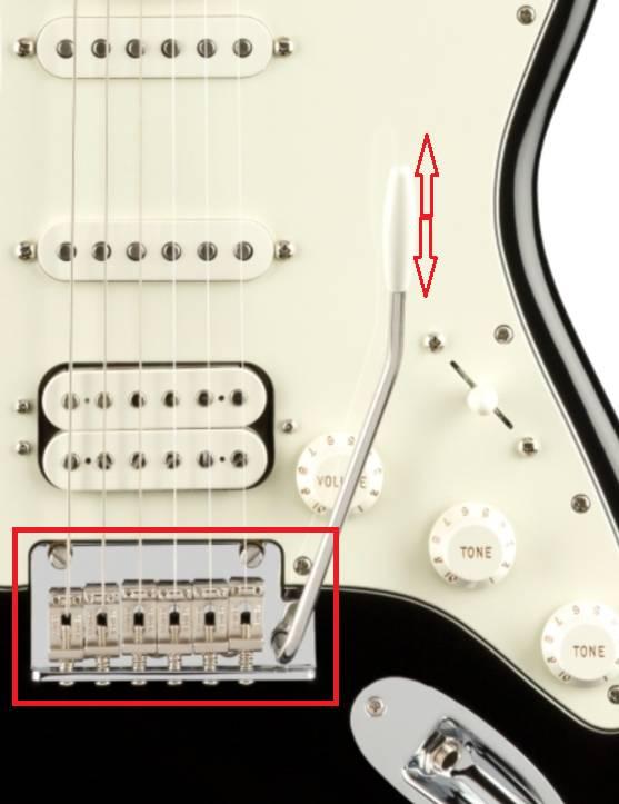 ngua dan guitar dien fender player stratocaster mn black