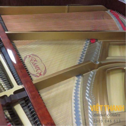 bo may piano Essex EGP-155C