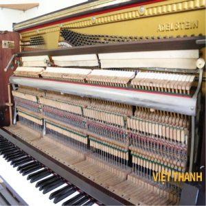 may dan piano Adelstein