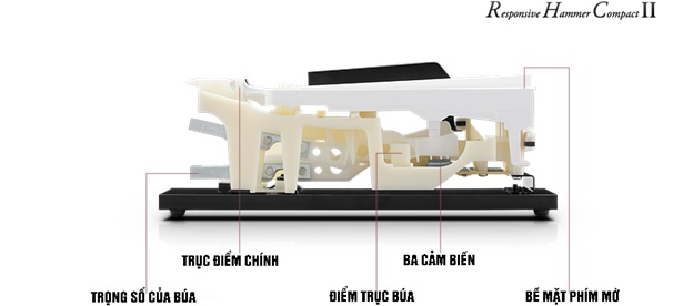 cau tao ban phim dan piano dien Kawai KDP-110R