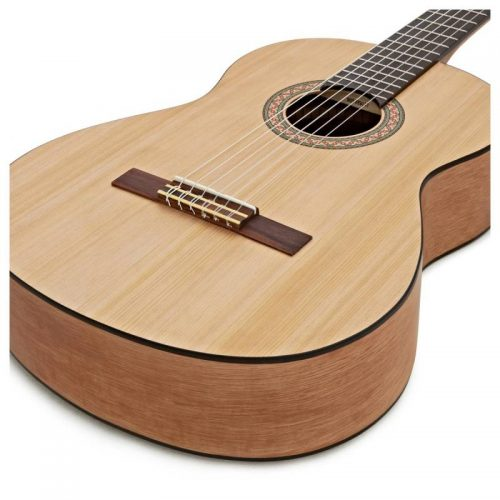 dan guitar Yamaha C40M