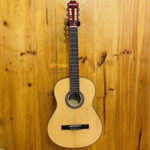 guitar Suzuki SNG 6NL
