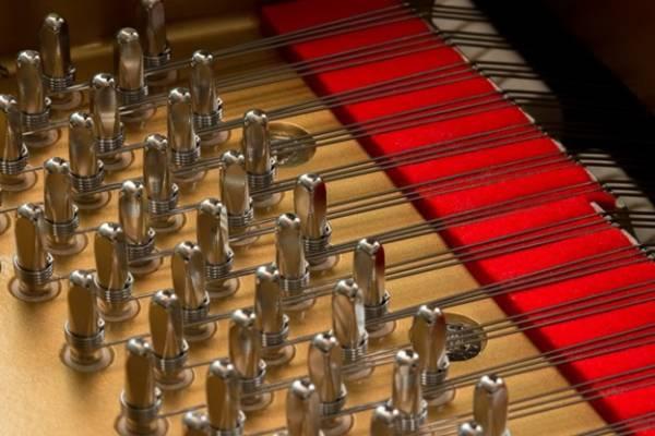 Pinblocks và Tuning pins đàn piano Yamaha G5E