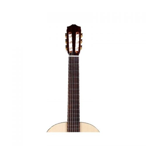 can dan guitar Cordoba C5 SP