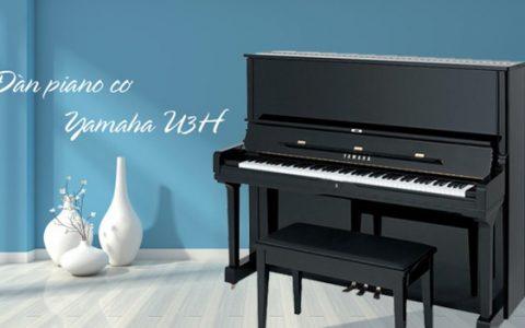 Cửa hàng bán đàn piano cơ cũ giá rẻ tại TPHCM