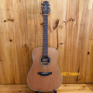 guitar Takamine GD20-NS
