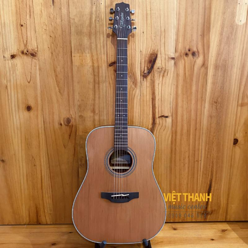 guitar Takamine GD20-NS