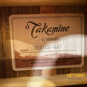 tem guitar Takamine GD71CE