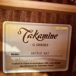 tem guitar Takamine GN15CE