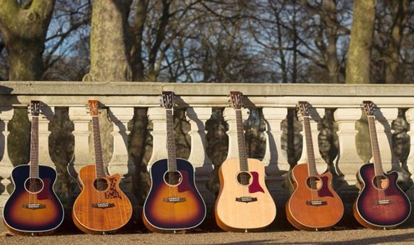 Guitar Acoustic Tanglewood