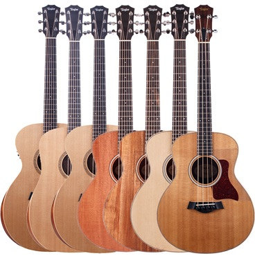 Taylor Academy series and GS mini series