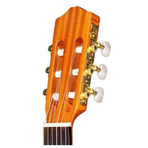 can dan guitar Cordoba C1