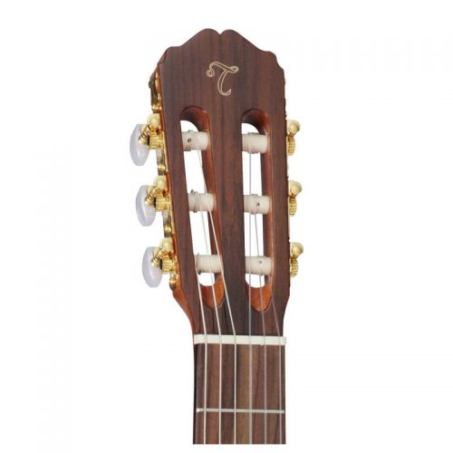 can dan guitar Takamine GC5