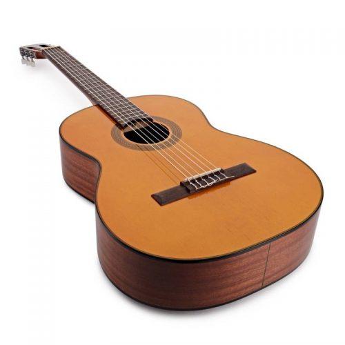dan guitar Takamine GC1