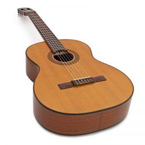 dan guitar Takamine GC3