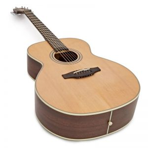 dan guitar Takamine GN20