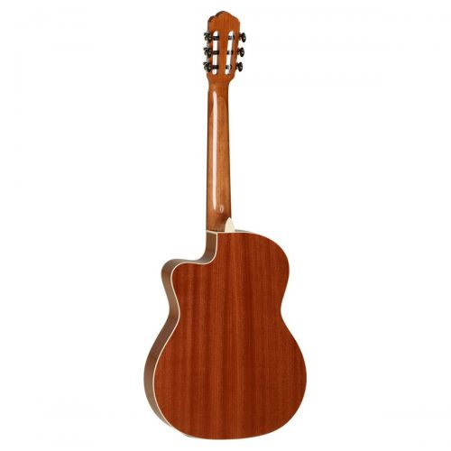 dan guitar Tanglewood TWR2 DCE