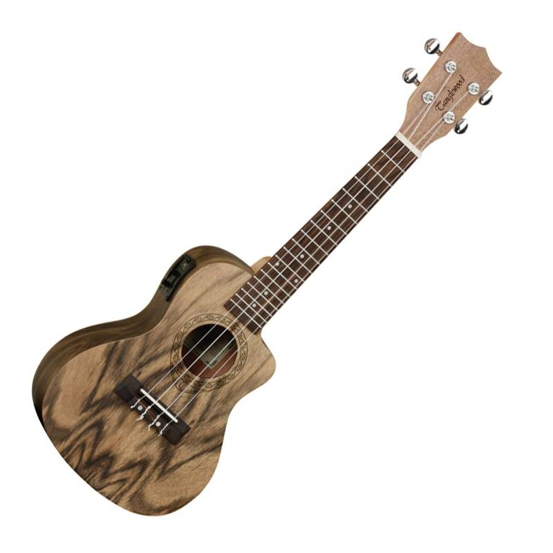 dan ukulele Tanglewood TWT13E