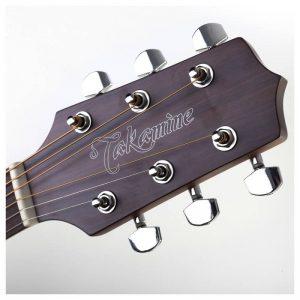 dau dan guitar Takamine GD20CE-NS