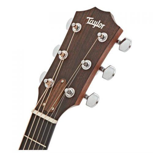 dau dan guitar Taylor 310CE