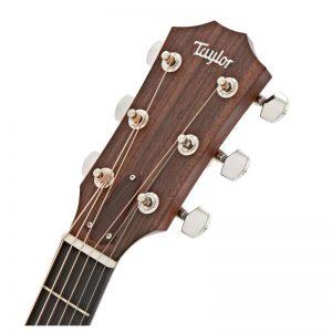 dau dan guitar Taylor 312CE