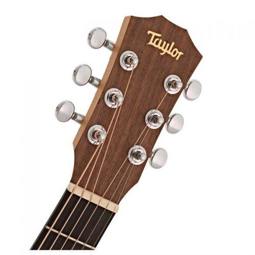 dau dan guitar Taylor Baby BT1