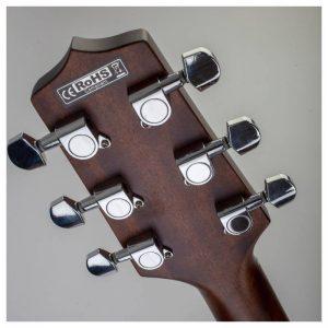 mat sau dau dan guitar Takamine GD20CE-NS