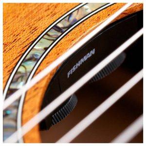 thung dan guitar Cordoba C4CE
