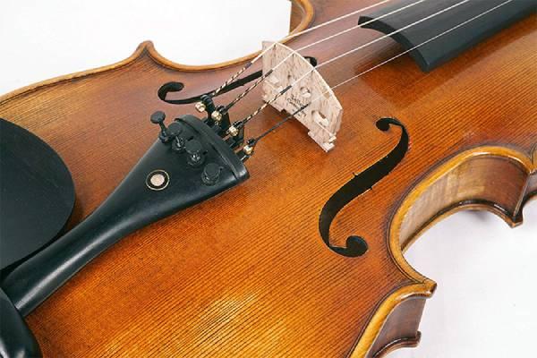 thung dan violin Selmer VI31E4CH