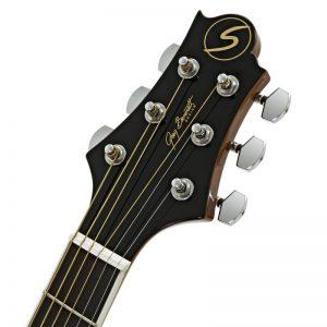 can dan guitar Greg Bennett GD-101S