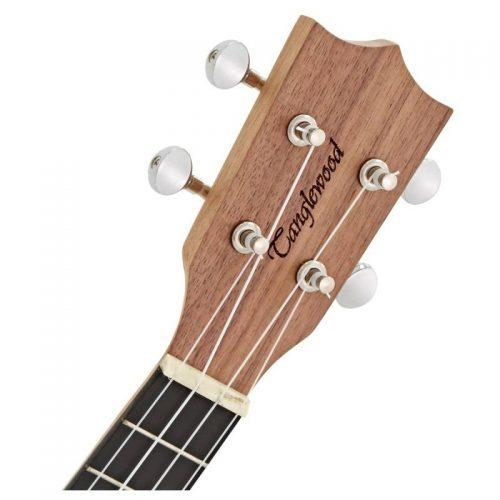 can dan ukulele Tanglewood TWT3