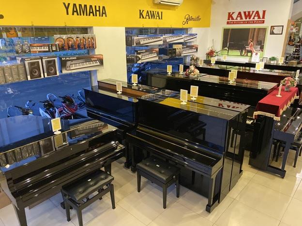 dan piano co viet thanh