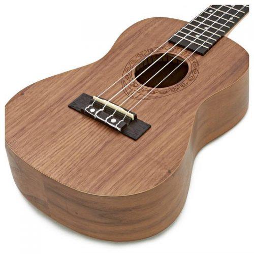 dan ukulele Tanglewood TWT3