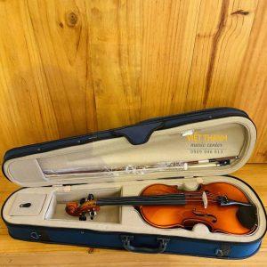 dan violin Suzuki FS-10 44 full hop