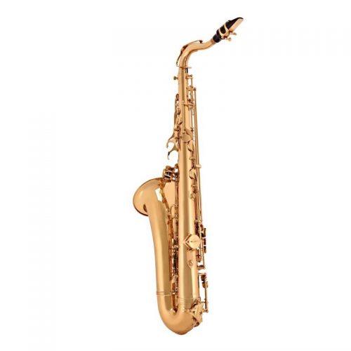 ken Saxophone Selmer TS650
