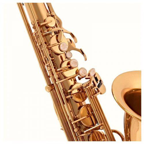 ken Saxophone Selmer TS650 chinh hang