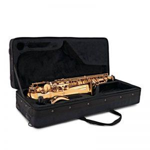 thung dung ken Saxophone Selmer TS650