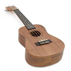 ukulele Tanglewood TWT3
