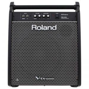 amp Roland PM-200