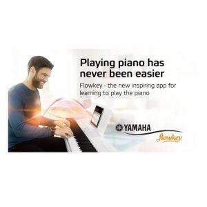 bieu dien tren organ Yamaha PSR-S970