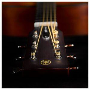 dau dan guitar Yamha FG5