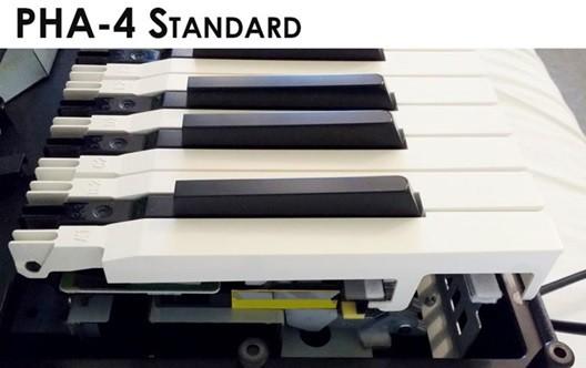 pha-4-standard