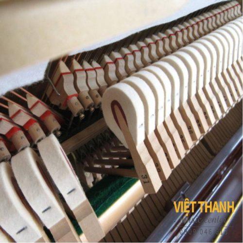 bua dan piano Yamaha W1ABic