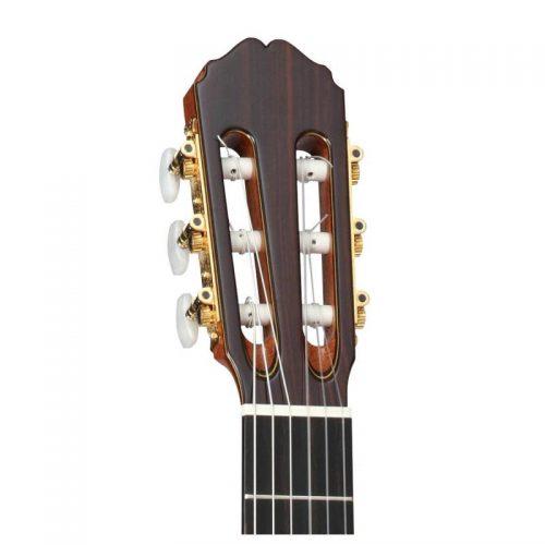can dan guitar Takamine TH5C