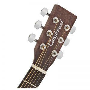can dan guitar Tanglewood TWCR OE