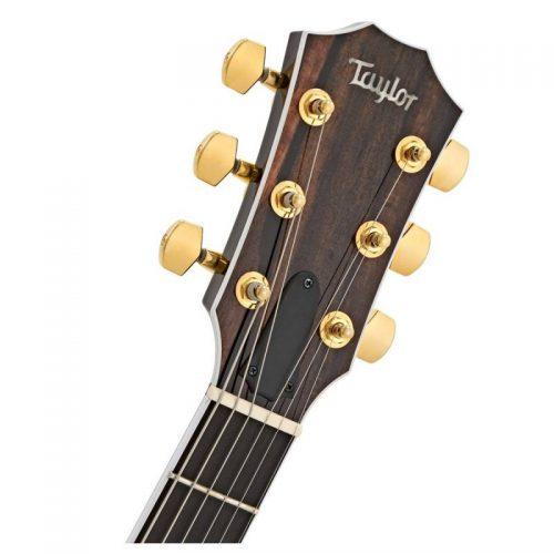 can dan guitar Taylor T5z