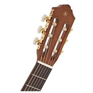 can dan guitar Yamaha C70