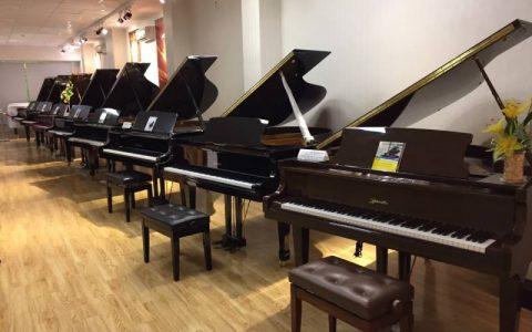 dan grand piano cho thue