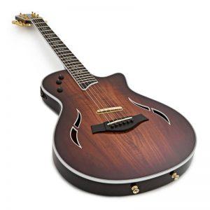 dan guitar Taylor T5z